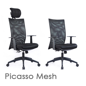 Picasso Mesh